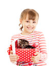 Happy girl with kitten in gift box Stock Image