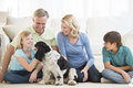Happy girl playing with dog while family looking at her little in living room Royalty Free Stock Image