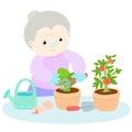 Happy grandmother love plant lettuce illustration Stock Photography