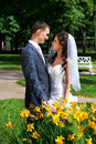 Happy groom and happy bride near yellow flowers Royalty Free Stock Photo