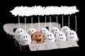 Happy group of eggs with copyspace over their head Royalty Free Stock Photography