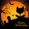 Happy halloween abstract cat silhouette on special background Royalty Free Stock Images