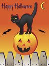 Happy Halloween Black Cat Stock Photo