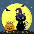 Happy Halloween. A Halloween cat in a witch hat sits next to a pumpkin filled with sweets. Full moon at night. Flying
