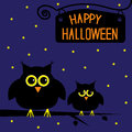 Happy halloween cute owls card starry night vector illustration Stock Image