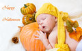 Happy halloween greeting card Stock Photography