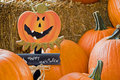 Happy Halloween pumpkins Royalty Free Stock Photo