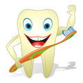 Happy Healthy Tooth With Toothbrush Stock Photos