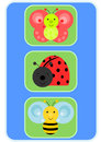 Happy insects: butterfly, bee and ladybird Stock Photos