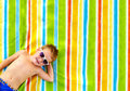 Happy kid sunbathing on colorful blanket laughing Royalty Free Stock Photography