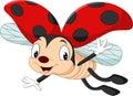 Happy ladybug flying