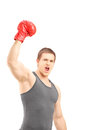 Happy male boxer wearing red boxing gloves and gesturing triumph isolated on white background Royalty Free Stock Photos