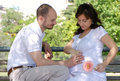 Happy married couple sitting on a bench Royalty Free Stock Images