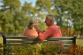 Happy mature couple in autumn day sitting on bench Stock Photography