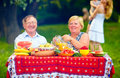 Happy mature couple having picnic outdoors family Royalty Free Stock Photos