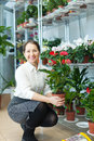 Happy mature woman chooses anthurium plant at flower shop Royalty Free Stock Photo