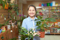 Happy mature woman chooses anthurium in pot at flower shop Stock Image