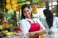 Happy mexican saleswoman on a farmers market Royalty Free Stock Photo