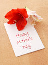 Happy Mother's Day Stock Images
