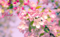 Happy mother s day greeting card or background for with flower Royalty Free Stock Photography
