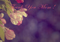 Happy mother s day in old style greeting card or background for with flower Royalty Free Stock Photography