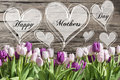 Happy mother`s day text heart with pink and white tulips rustic wooden background greeting card spring flowers Royalty Free Stock Photo