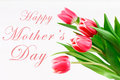 happy mother& x27;s day text sign on pink tulips on white rustic wooden background. greeting card concept. sensual tender women