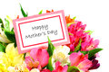Happy mothers day card among colorful flowers over white Stock Photography