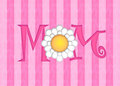 Happy Mothers Day with Daisy Flower Stock Photos