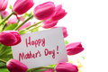 Happy mothers day pink tulips for mother s Stock Images