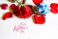 Happy mothers day with rose and gift