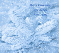 Happy new year card with frost pine and snow background Stock Image