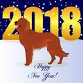 Happy new year card with Irish Setter