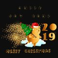 Happy New Year. Gold cute funny pig. Chinese symbol of the 2019 year. Excellent festive gift card for your design. Vector illustra