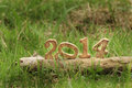 Happy new year on grasses in the garden natural concept Stock Photography