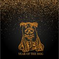 Happy new year and year dog card with golden dog in doodle style abstract lines on black background  design. Royalty Free Stock Photo