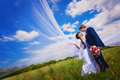 Happy newlyweds on the blue sky background bride and groom in green field Stock Photography