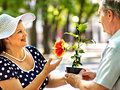 Happy old couple with flower outdoor Royalty Free Stock Photography