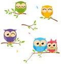 Happy Owl family sit on tree