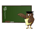 Happy owl teaching in class Stock Images