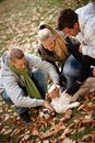 Happy people stroking dog outdoors Royalty Free Stock Photo