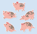 Happy pigs five prancing and playing Stock Photo