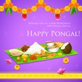 Happy pongal illustration of greeting background Royalty Free Stock Photography
