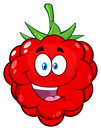 Red Raspberry Fruit Cartoon Mascot Character Giving A Thumb Up