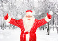 Happy santa claus in forest the winter Royalty Free Stock Photography