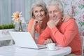 Happy senior couple with laptop Royalty Free Stock Photo