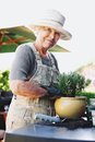 Happy senior female gardener potting new plant woman planting in terracotta pot on a counter in backyard working in backyard Royalty Free Stock Photo