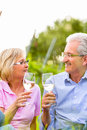 Happy seniors having picnic drinking wine senior couple of men and women on summer meadow in vineyard Stock Image
