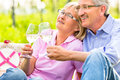 Happy seniors having picnic drinking wine senior couple of men and women on summer meadow in vineyard Royalty Free Stock Image