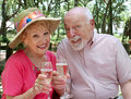 Happy Seniors Toasting Royalty Free Stock Photography